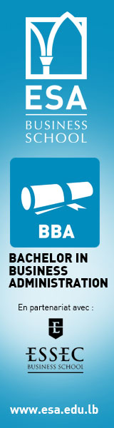 Bachelor in Business Administration (BBA)